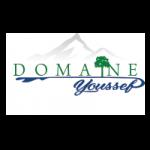 Domin-yousaf